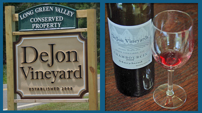 DeJon Vineyard